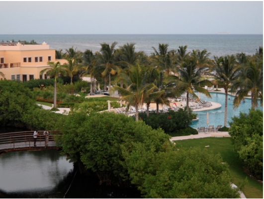 View of Hacienda Tres Rios from Hotel room