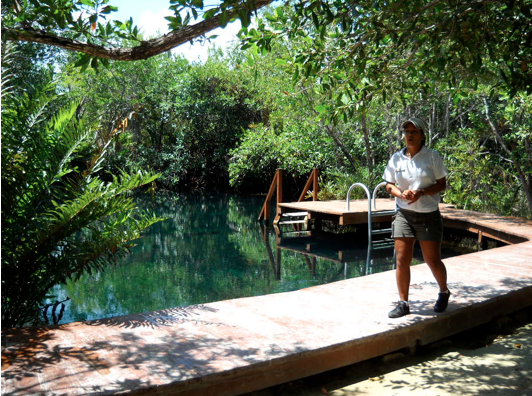 Entrance to the Cenote.
