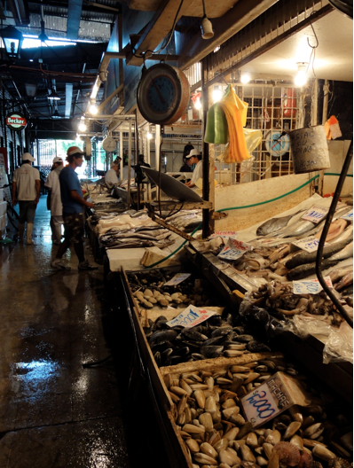 The Mercado Centro for fish and more fish