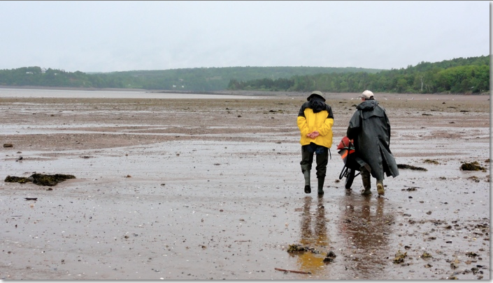 Two men walking at low tide.