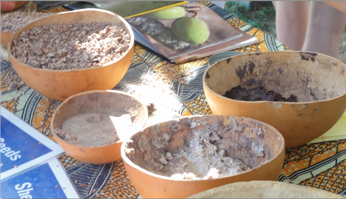The making of Shea Butter