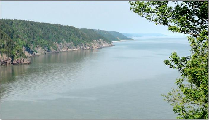 Coastline of Ocean