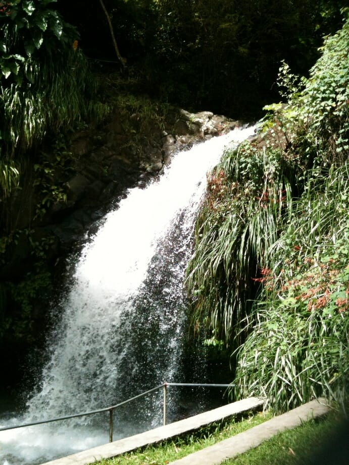photo, image, waterfall, annandale, grenada