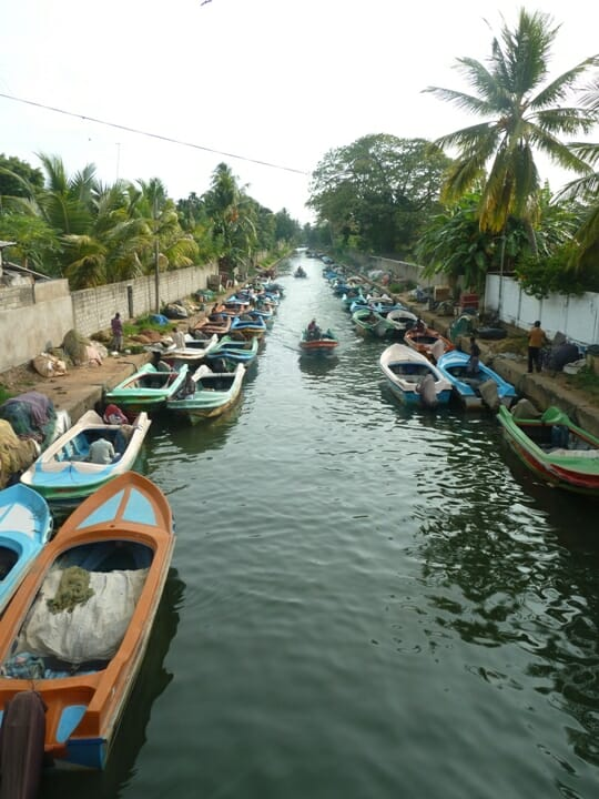 photo, image, boats, sri lanka