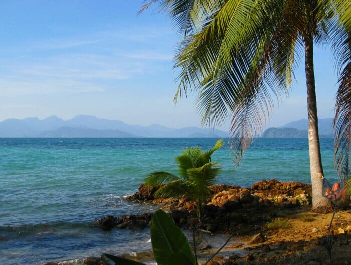 photo, image, beach, palm, koh chang, thailand