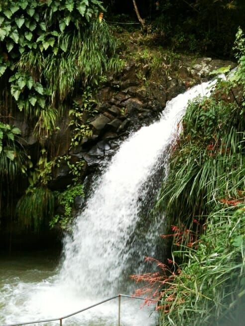 photo, image, annandale waterfall