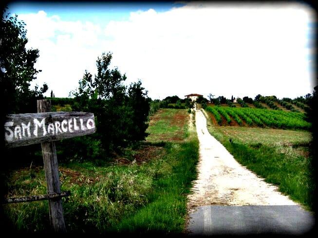 photo, image, countryside, tuscany