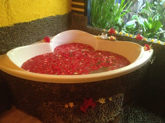 photo, image, flower bath