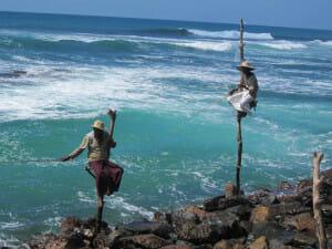 Solo Travel Destination: Sri Lanka
