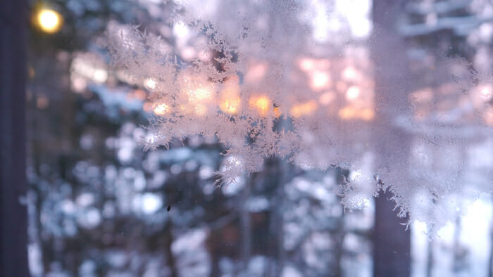 frost crystals on glass, winter retreat
