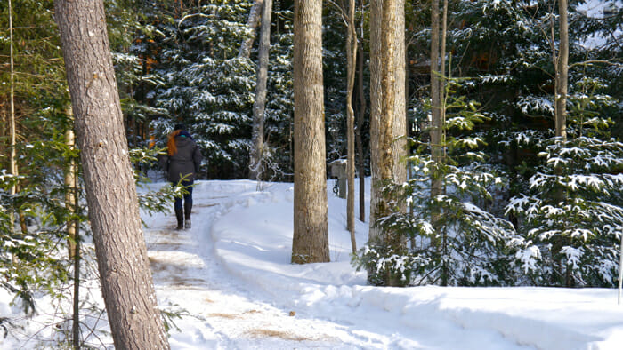 Woman wanding on winter path, winter retreat