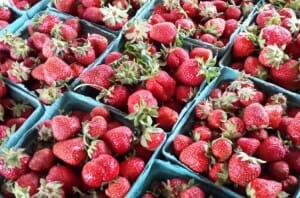 photo, image, strawberries