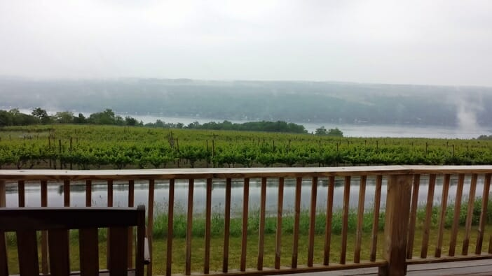 photo, image, deck, dr. frank's, finger lakes