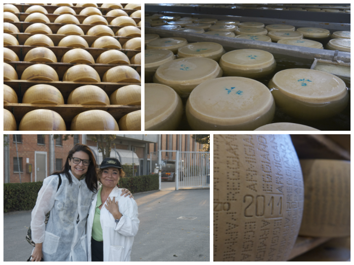 The making of Parmigiano Reggiano .