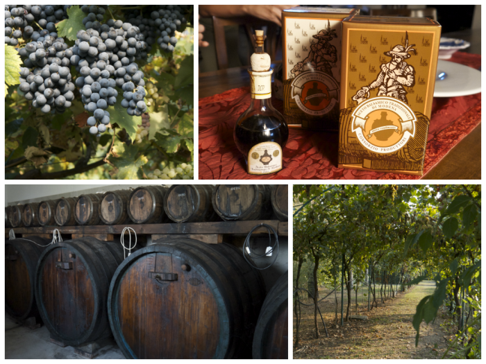 The making of Aceto Balsamico Tradizionale di Modena. From top left and clockwise: the red grapes for this basamico (they also use white grapes), the vinegar that I bought, a beautiful trellis of grape vines and the casks for the first 6 years of aging.