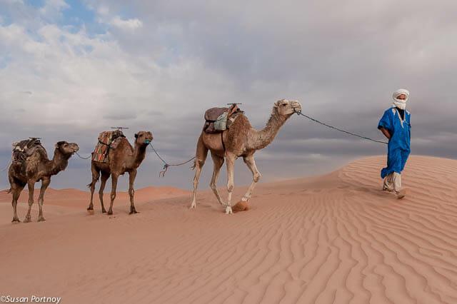 Sahara desert, photography safari