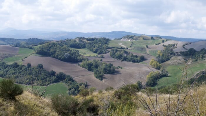 Countryside to the west of Dozza, emilia romagna
