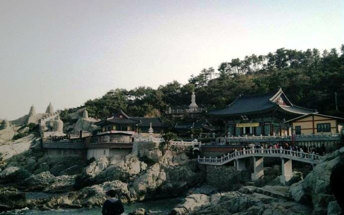 photo, image, temple, busan