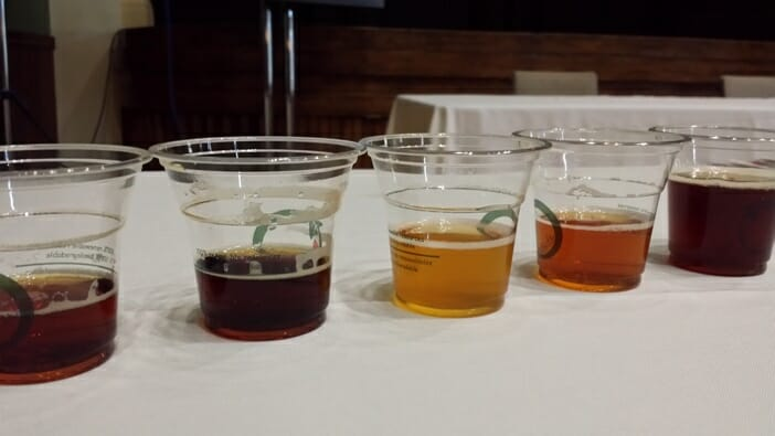 photo, image, beer tasting