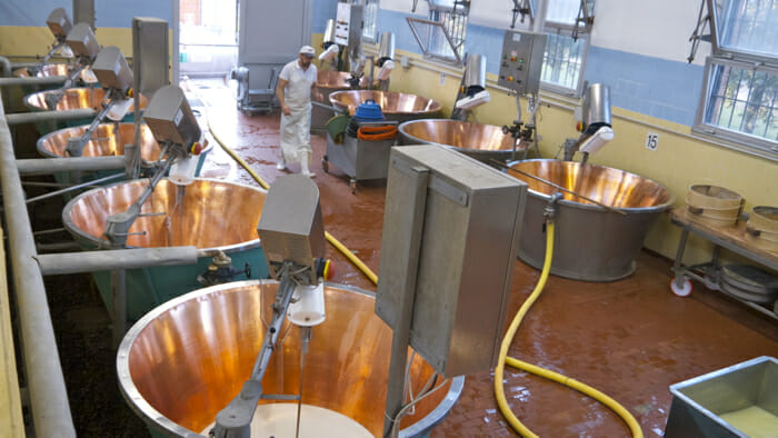 Each vat contains milk from different farms terroir