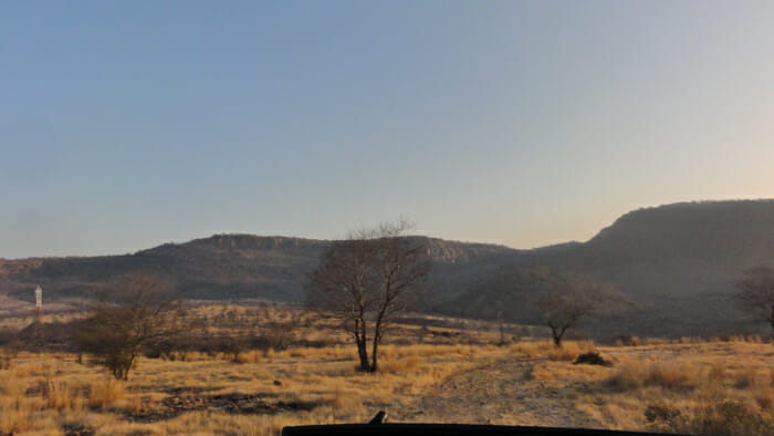 Ranthambohr Tiger Reserve in early morning light