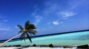 photo, image, beach, maldives