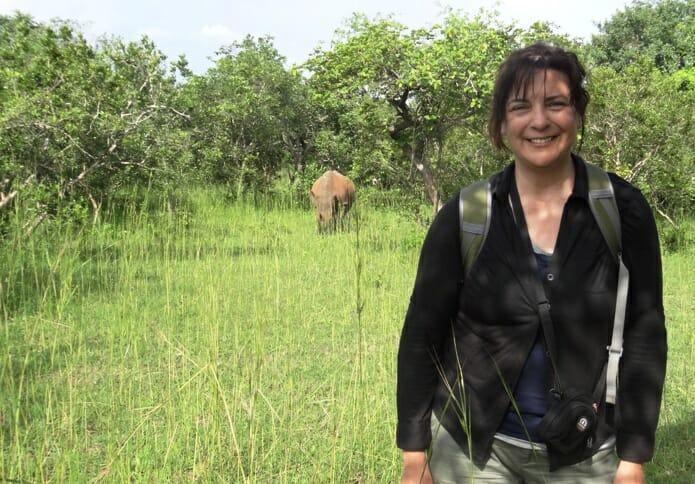 photo, image, rhino, traveler