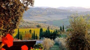photo, image, countryside, siena, italy, tuscany