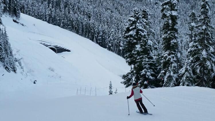 learning to ski properly