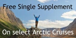 single arctic display ad