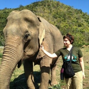photo, image, elephant nature park, thailand