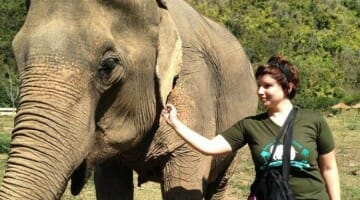 Solo Travel Destination: Elephant Nature Park, Thailand
