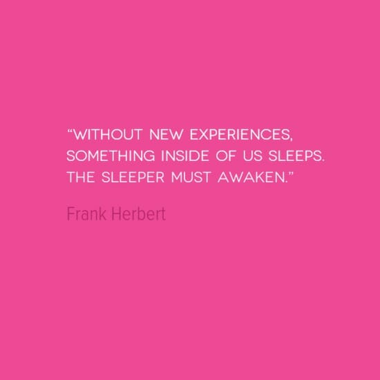 photo, image, frank herbert, new experiences, best solo travel quotes
