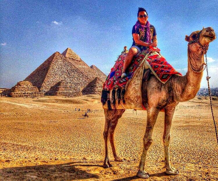photo, image, camel, pyramids, giza, egypt