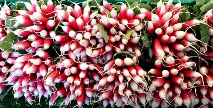 photo, image, radishes, paris market