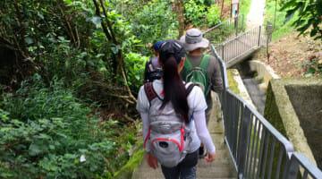 Meetup.com Got me Hiking in Hong Kong: And it was #$@&%*! hard!