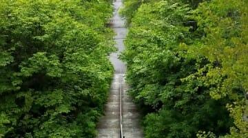 photo, image, abitibi, stairs