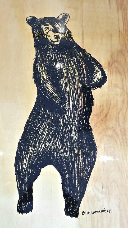 photo, image, bear, abitibi