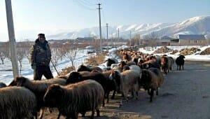 Solo Travel Destination: Armenia