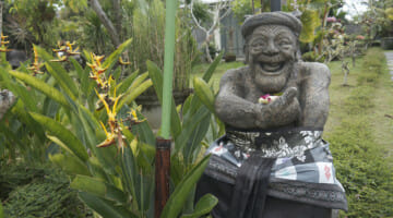 Images of Bali: Where Art, Tradition and Happiness Meet