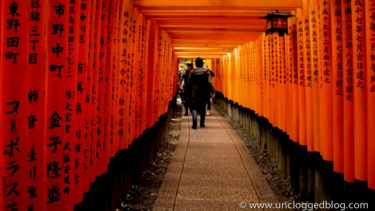photo, image, gates, kyoto, japan