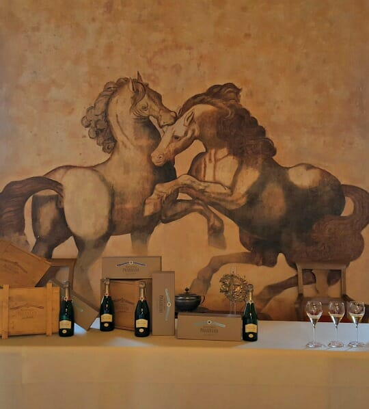 photo, image, horses, franciacorta, berlucchi, italy