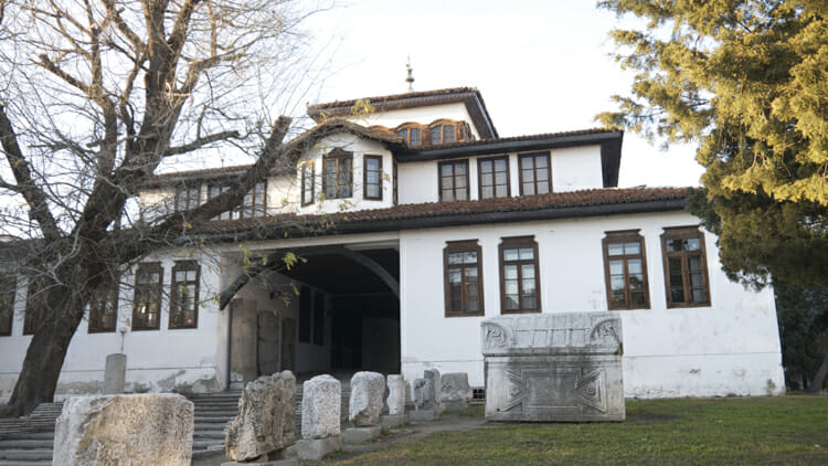 Historical Museum Vidin, solo on a river cruise
