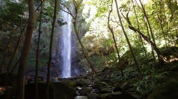 Solo in Kauai: What I Spent