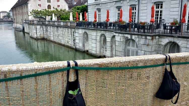 photo, image, bridge, aare river, solothurn, switzerland