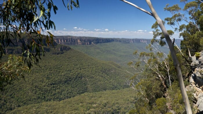 The Beauty of the blue Mountains goes on forever.