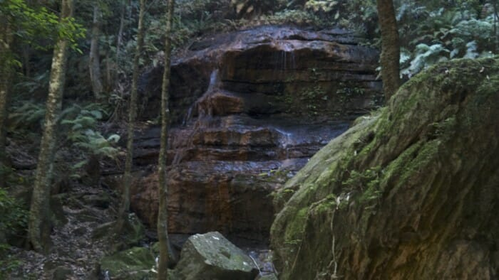 Nearing the top of the Fuber steps is this dramatic, natural face in the stone structure.