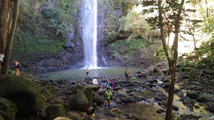 My kayaking on the Wailua River included a hike to the (not-so) Secret Falls. During the week there would be many more people there and on the trail than there was on the Sunday. If you'd like to book with T (my guide) contact him at doubledreadlocks@yahoo.com.