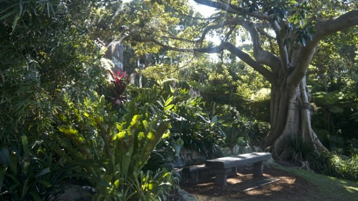 Wendy Whiteley's Secret Garden, North Sydney.
