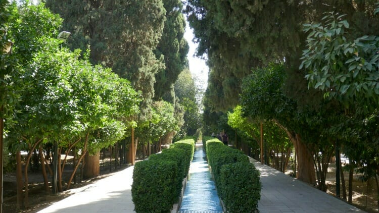 photo, image, garden, shiraz, iran